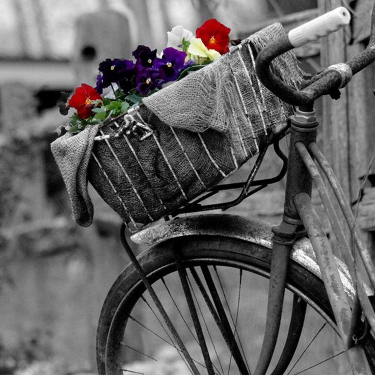 Siyah beyaz hayata, gökkuşağı olmaktır aşk. Burak Bayer….