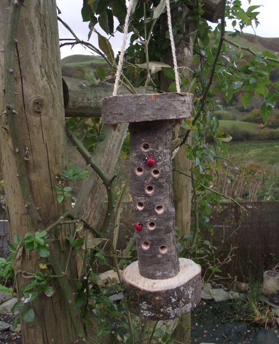 Insect home. Ladybird house. Bug Hotel by quincepie on Etsy, £5.00