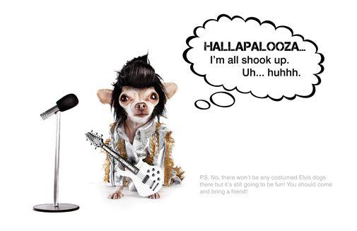 Hallapalooza