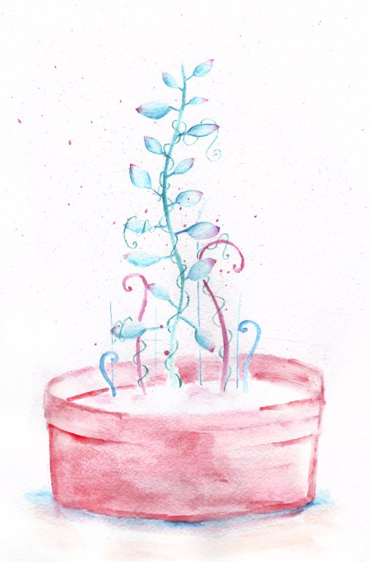 Watercolor succulent by mariaptore