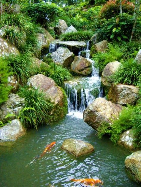 174 best water features images on pinterest garden for Coy pond waterfall