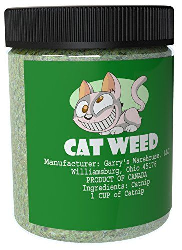 Cat Weed Catnip has Maximum Potency Premium Blend Nip That Your Cats to Go Crazy Over (1 Cup)  100% NATURAL: Freshly grown in Canada, guaranteeing highest quality with no preservatives or artificial ingredients.  HARVESTED FRESH: Planted, grown and harvested at the highest peak of season, ensuring best plant quality for essential oil.  HEALTHY: Turn your tired or old Kitten into an excited playmate with a great form of exercise!  UNIQUE EXTRACT: Proprietary herb blend will last longer ...