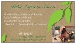 Ya puedes contar con mis servicios de jardinería integrado en un grupo de profesionales.