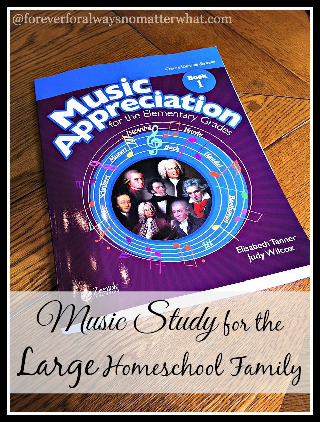 Music Study for the Large Homeschool Family