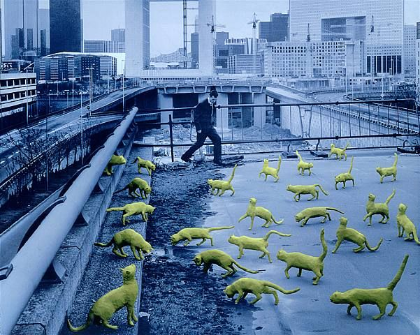 Cats In Paris  1993  Sandy Skoglund (born 11 September 1946) is an American photographer and installation artist.