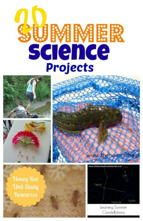 20 Summer Science Projects - TheHomeschoolScientist.com