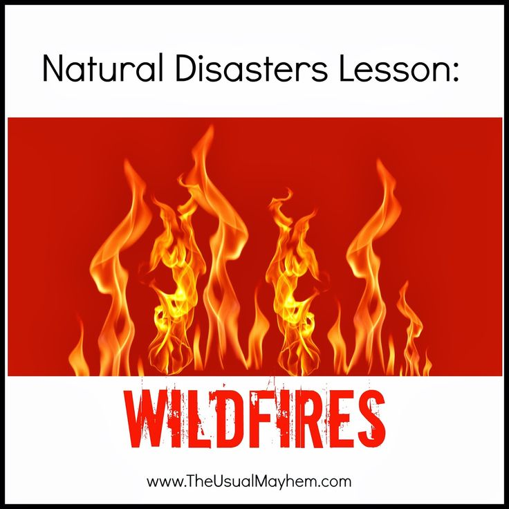 natural disaster lesson wildfires
