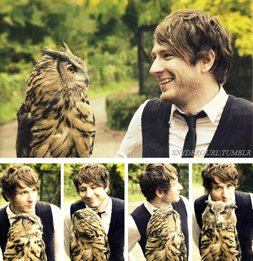 Adam Young and an owl. Quite possibly the most adorable thing I've ever seen.