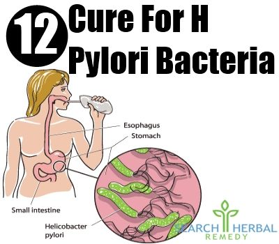 An H. pyloric bacterium is a gram negative bacterium that is responsible for many stomach related problems like ulcer, gastritis and lots more. This bacteria lives inside the stomach of people and serves as the root cause for many diseases. Hence, it has to be treated at an early stage before the situation worsens. There is lot of natural cure for H pyloric bacteriawhich canrestore health without any side effects. Effective Natural Cures For H Pyloric Bacteria Garlic Daily consumption of…