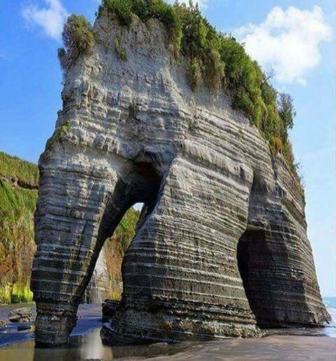 Elephant Rock, New Zealand (North Island)
