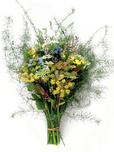 Flowering vegetables: (1) Asparagus; (2) Garlic chives; (3) Lemon verbena; (4) Cabbage; (5) Fennel; (6) Tree spinach (7) Chinese broccoli (kai-lan); (8) Oysterleaf. Combinations created by: Peter Bauwens