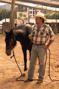 Postura relajada, caballo relajado