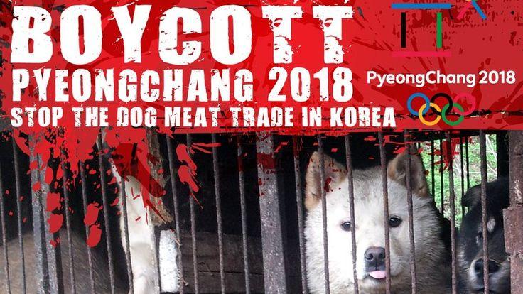 Petition · Mr. Thomas Bach, Mr. Yang-Ho Cho: Boycott PyeongChang 2018 Winter Olympics in South Korea, A Dog Eating Nation! · Change.org