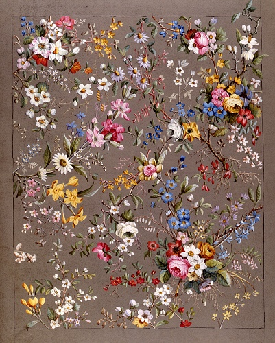 Design for chintz, from an Album of Chintz Designs, by William Kilburn. England, 18th century: