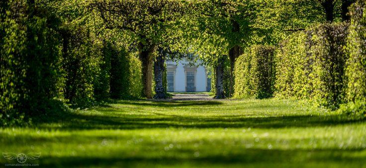 The Green Mile - http://www.comanalexandra.com/ @Schlossanlage Schleissheim