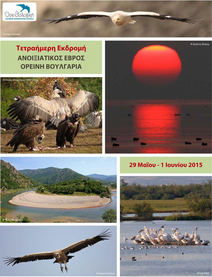 """""""Δράσεις"""" Οικολογία και Περιβάλλον: Τετραήμερη εκδρομή στη Βόρεια Ελλάδα και τη Βουλγα..."""