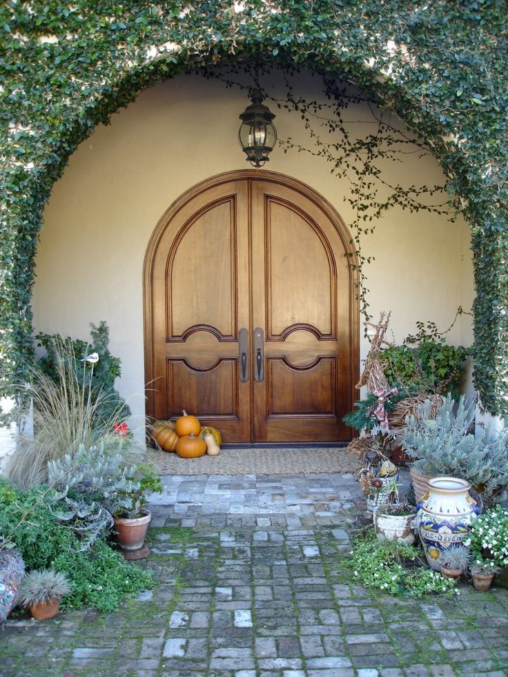 #20 Sapparro arched pair in Mahogany. Entry Doors & 20 best AAW doors inc entry doors images on Pinterest | Entry ... Pezcame.Com