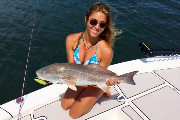 Florida insider fishing report 2015