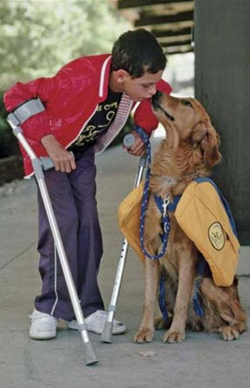 Service dog with affectionate owner • photo: sema_trnty on Flickr. <3