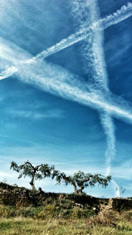 #anarchy in the #sky