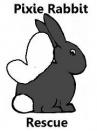 Pixie Rabbit Rescue | Ashington, Northumberland