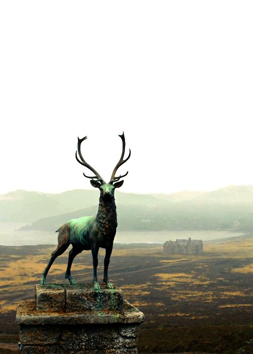 Skyfall. Scotland. I wanna go.....especially if James is there waiting for me.