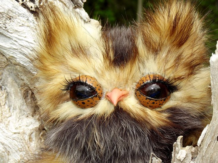 Owl Butters a real fur handmade owl, OOAK by chevous on Etsy