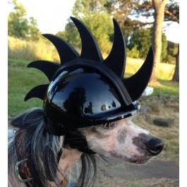 15 Best Images About Dog Helmets On Pinterest Pink