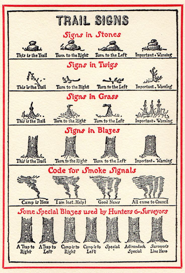 """From Sketches by Ernest Thompson Seton, 1911 """"Trail Signs"""""""