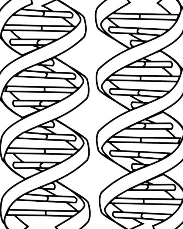 Images Of Dna Coloring Pages Tribal Tattoos Coloring Pages Color