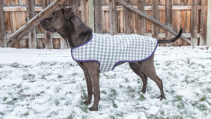 DIY Dog Coat Video Tutorial including drafting the pattern