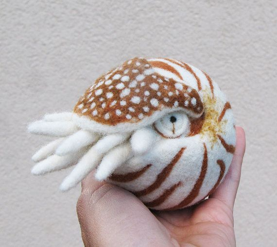 Nautilus needle felted wool ball child friendly art by roommate