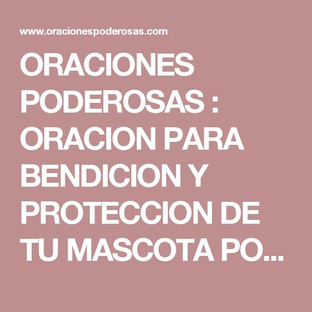 ORACIONES PODEROSAS : ORACION PARA BENDICION Y PROTECCION DE TU MASCOTA POR SAN FRANCISCO DE ASIS