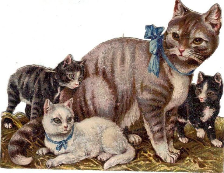 Victorian Die Cut Scrap Mother Cat and Kittens c1880