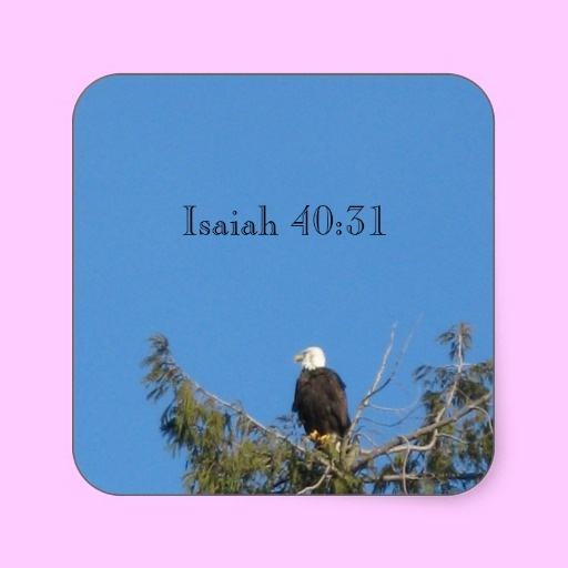 American Bald Eagle Sticker A Favorite Bible Verse About The Eagle Is