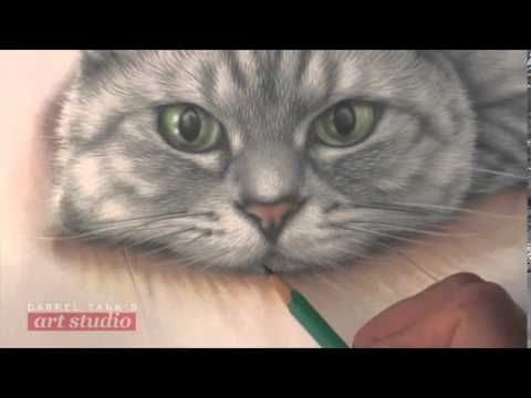HOW TO DRAW A CAT: FINE FUR DETAIL (Art Studio 77 excerpt) (+playlist)