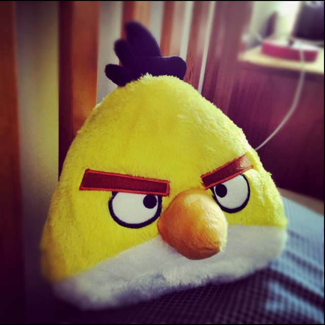 canary angry bird pillow: Bird Pillow, Canary Angry, Kids Clothes, Angry Birds