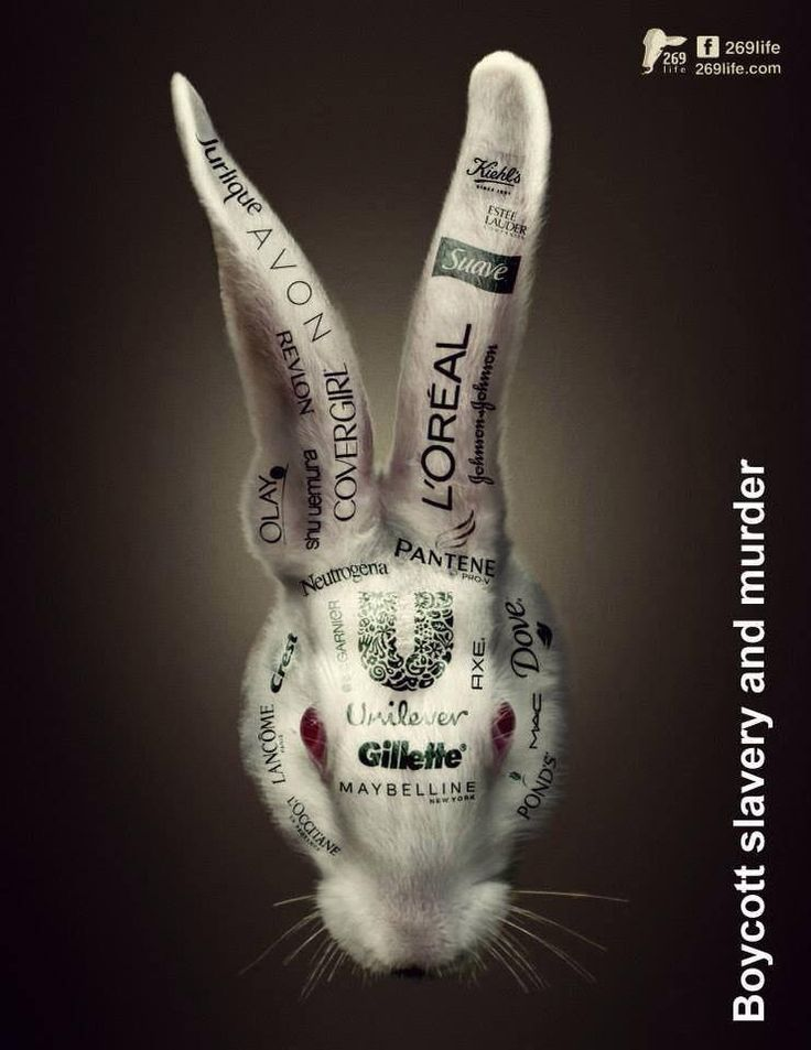 Boycott these companies that test their products on animals. Say no to animal cruelty!!!