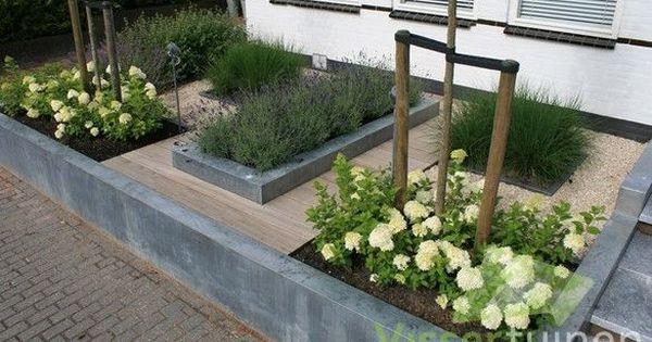 Kleine voortuin met strakke lijnen. Goede combinatie van diverse beplanting. | Tuin | Pinterest | Gardens, Small gardens and Brooke d'orsay