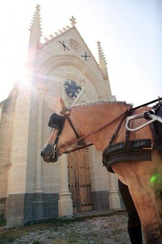 Venez découvrir le château de Léognan en faisant une balade en calèche. Pour réserver cette prestation il vous suffit de réserver votre visite sur Wine Tour Booking