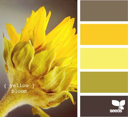 Bathroom Yellow Color Scheme 660 best 配色 images on pinterest | colors, colour palettes and