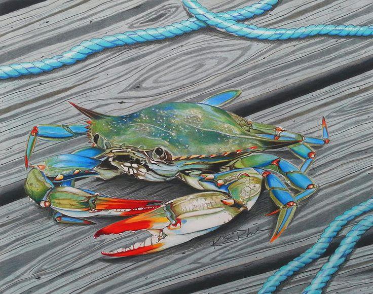 Crab Drawing Mr. Jimmy by Karen Rhodes Crab art, Blue