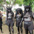 Mengusir Hama Penyakit Tanaman melalui Tradisi Kebo-keboan - IndonesiaKaya.com