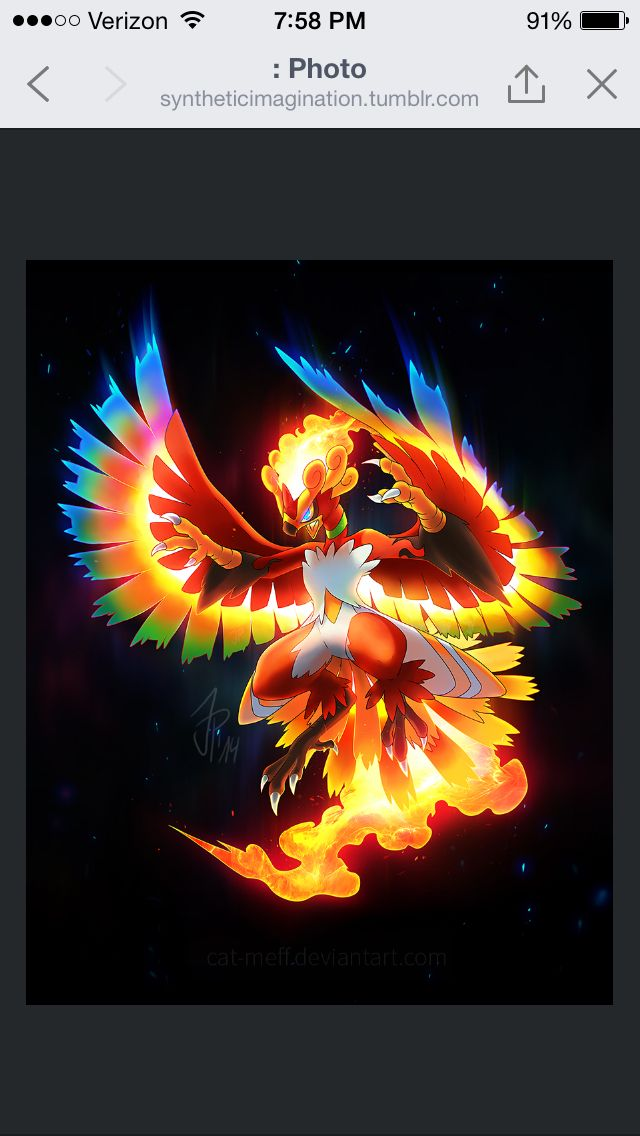 Legendary Fire Bird Pokemon mashup