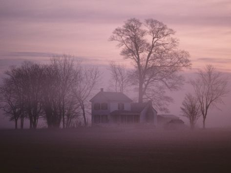 Fall Fog on Suffolk Virginia Farm Photographic Print by Karen Kasmauski at Art.com