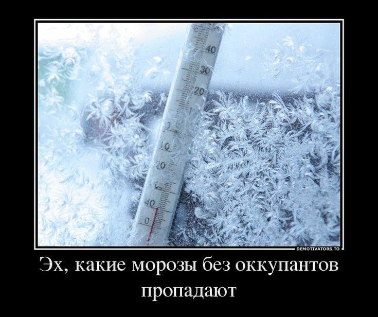 шинца смешные картинки про холод мороз с надписью события предполагают