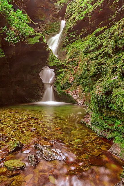 St Nectan's Glen, Tintagel, Cornwall.    		One of Cornwall's most sacred sites.  St.Nectan's waterfall is in a  designated Site of Special Scientific Interest (SSSI), it has been  described as amongst the ten most important spiritual sites in the  country.A place of outstanding natural beauty.  The magic and tranquility of  St Nectan's Kieve are unique.  The Kieve is a potent symbol of Mother  Earth.