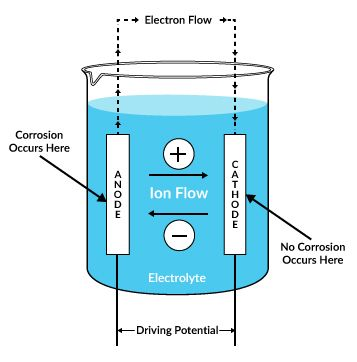 In a Daniell cell which is the anode and which is the cathode?