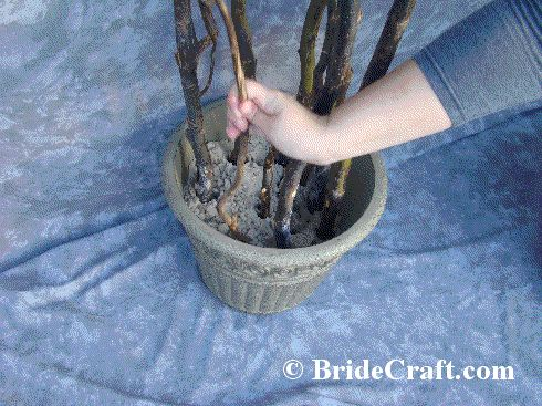 Curly Willow Branch Wedding Arch | DIY Branch Wedding Arch!