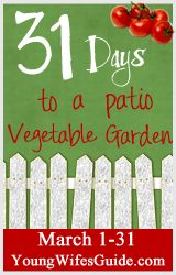 31 Days to a Patio Vegetable Garden {Day 1}: Introduction - Young Wife's Guide | Young Wife's Guide